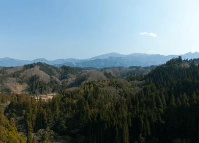 竹田の山々