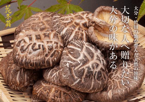 大分・竹田の地が育んだ天然の旨味 大切な人へ贈りたい大分の味がある 花冬菇