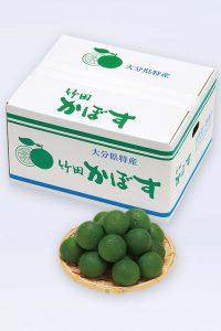 贈り物_大分県竹田産_特級かぼす10kg