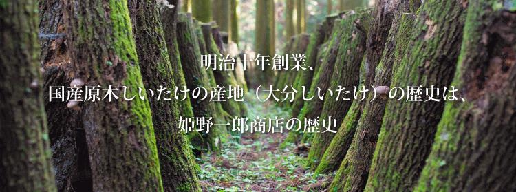 明治十年創業、 国産原木しいたけの産地(大分しいたけ)の歴史は、 姫野一郎商店の歴史