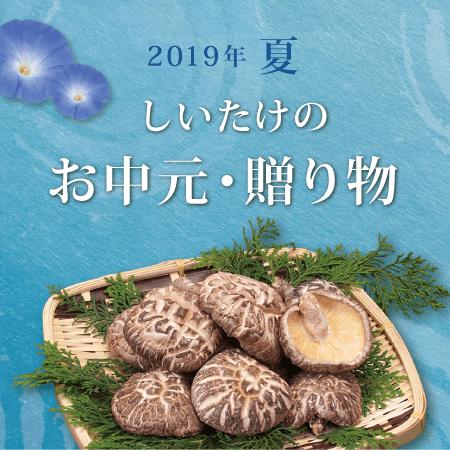 2019年お中元