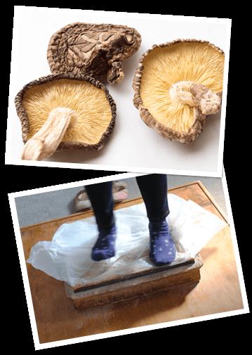 国産・原木栽培のしいたけの中でも質の高いものだけを使用